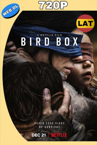 BIRD BOX: A CIEGAS (2018) WEB-DL 720P LATINO-INGLES MKV