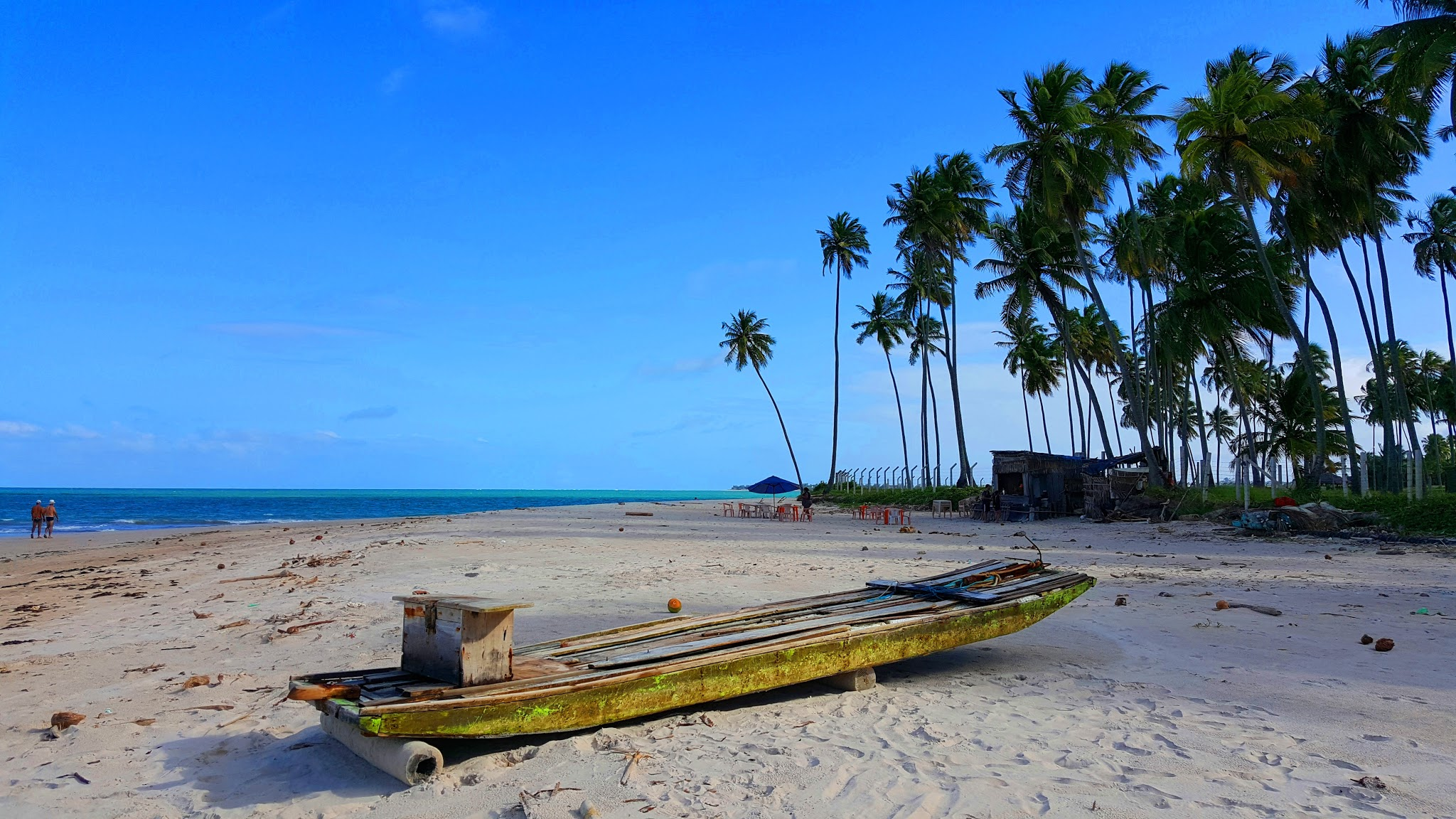 Praia dos Carneiros,Pernambuco,Brasil