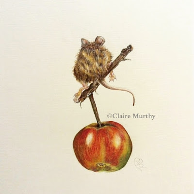 Polychromos mouse and apple illustration