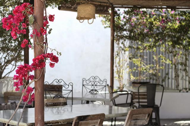 Formentera - restaurante ca na pepa