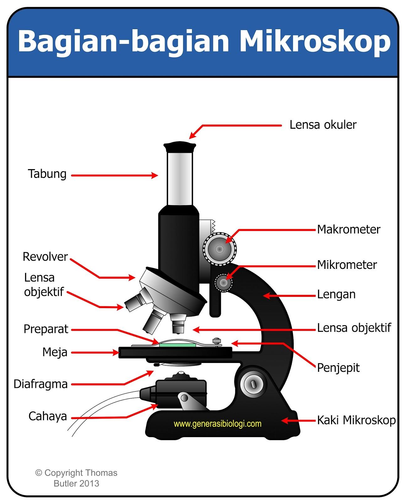 Macam Macam Mikroskop Dan Fungsinya Materi Lengkap Generasi Biologi