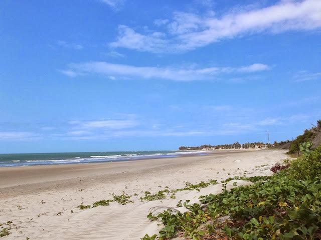Visita à Praia de Flexeiras (Foto: Raul Lima)