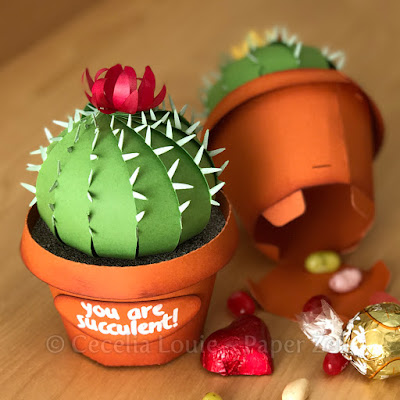 paper cactus succulent party favor gift box svg cutting file Cricut Silhouette