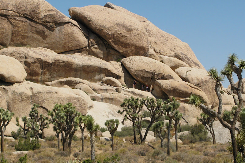 Joshua Tree National Park Hall of Horrors California Weekend Getaways Ideas