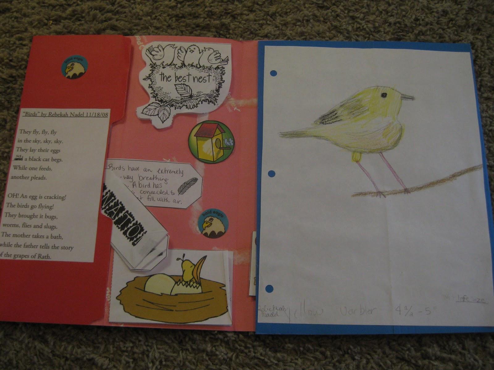 "Thy Word: ""Backyard Birds"" lap book"