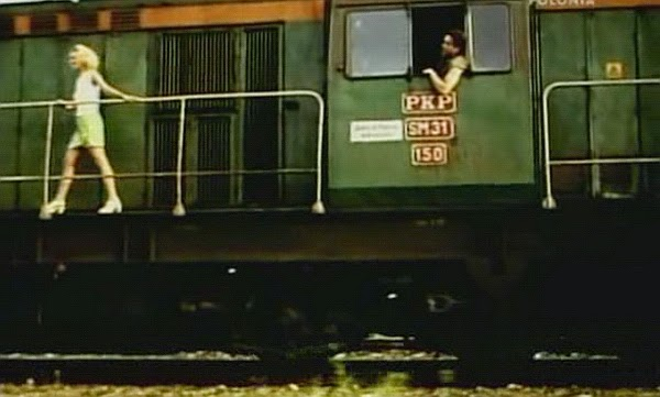 sm31 film
