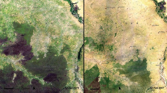 You Still Think Climate Change Is A Hoax These 20 Before-And-After Photos Will Leave You Speechless! - DEFORESTATION OF BABAN RAFI FOREST, NIGER, 1976 AND 2007