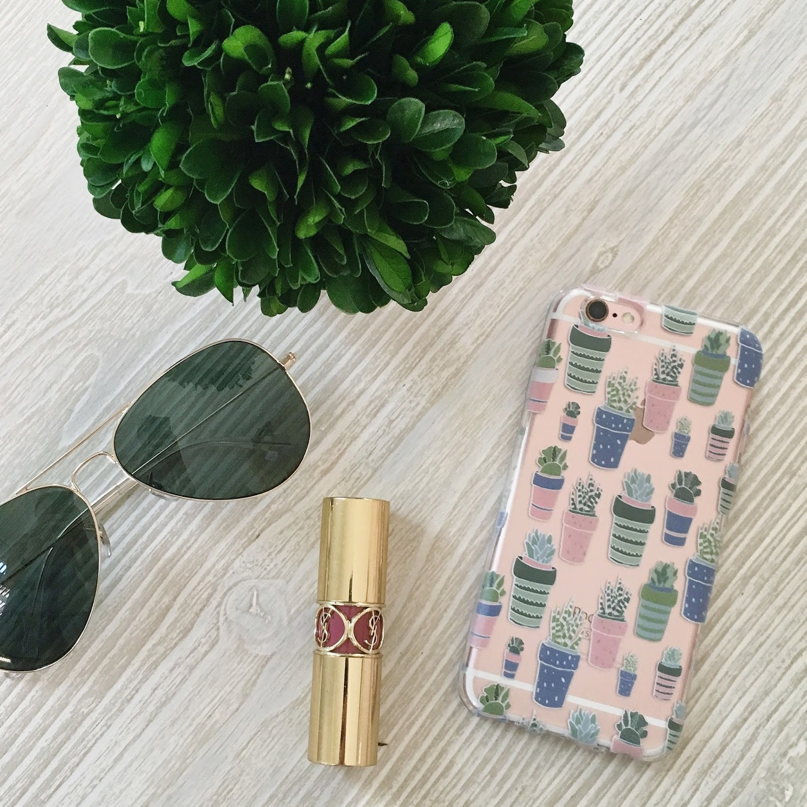 succulent phone case
