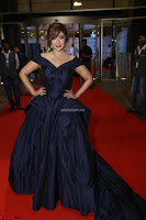 Payal Ghosh aka Harika in Dark Blue Deep Neck Sleeveless Gown at 64th Jio Filmfare Awards South 2017 ~  Exclusive 117.JPG