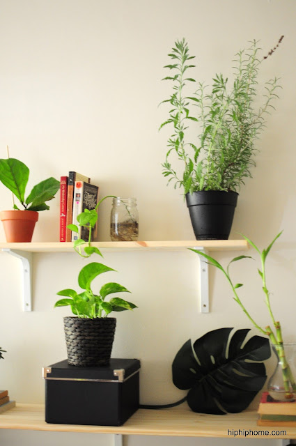 Houseplant shelving