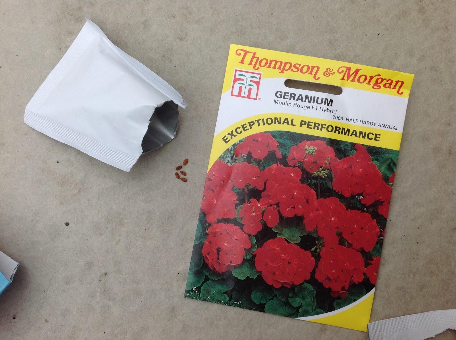 art design landscape: seeds & seed packets