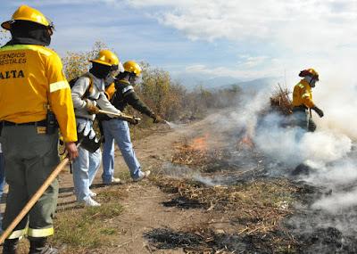 Eliminación de vegetación a través de quemas