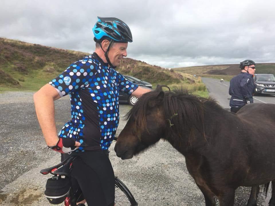 A male cyclist pats a Dartmoor pony