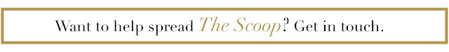 Get In Touch With The Team At The Bold Scoop