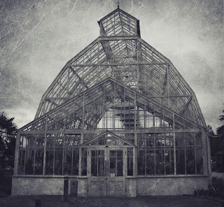 Vintage Greenhouse Photo Edit