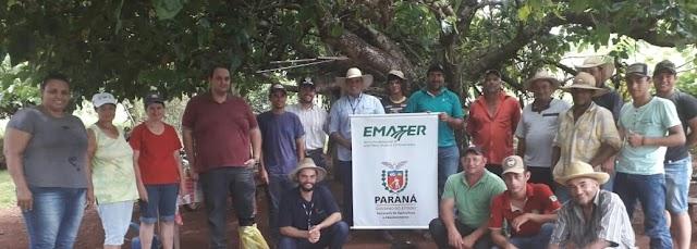 Iretama - Emater incentiva a conservação de forragem através da ensilagem