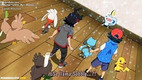 Pokemon 2019 Capítulo 28 Sub Español HD