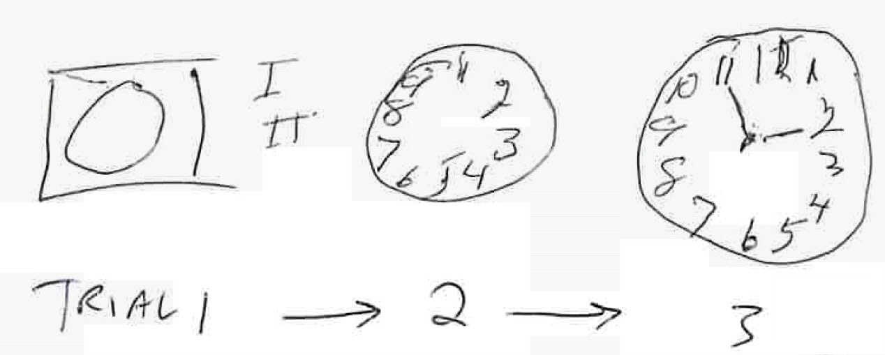 Clock drawing test instructions