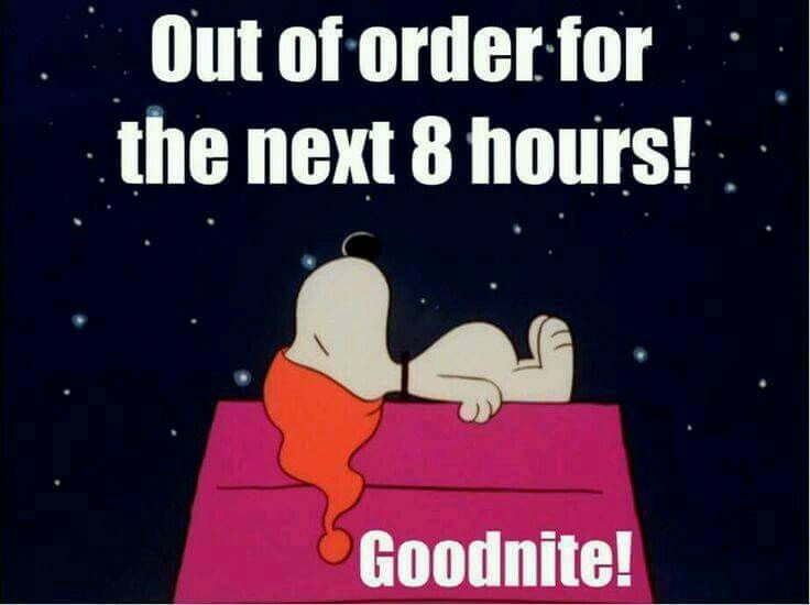 Funny Good Night Meme, Wallpaper