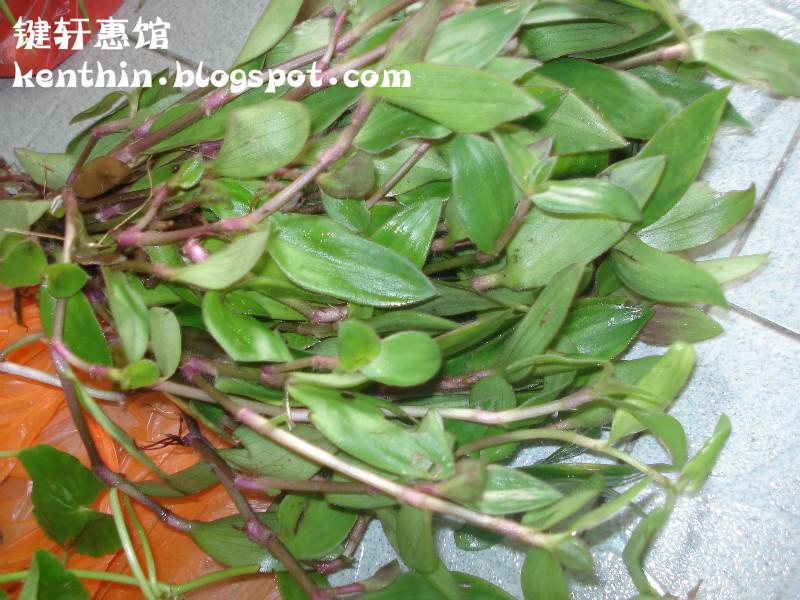 鍵軒惠館: 崩大碗+水龜草