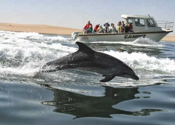 Namibia Reservations: Fun Things to do in Walvis Bay