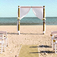 Beach wedding backgrounds - CU