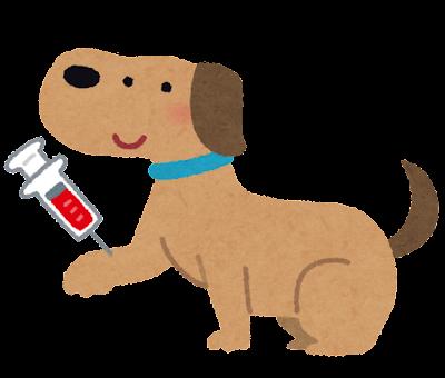 ペットの採血のイラスト(犬)