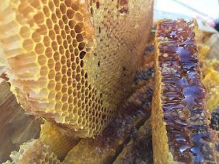 Cara menghilangkan komedo dengan madu