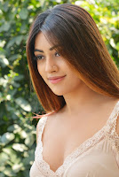 Anu Emmanuel Photos at Oxygen Interview TollywoodBlog