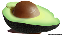 royalty free avocado fruit cliparts