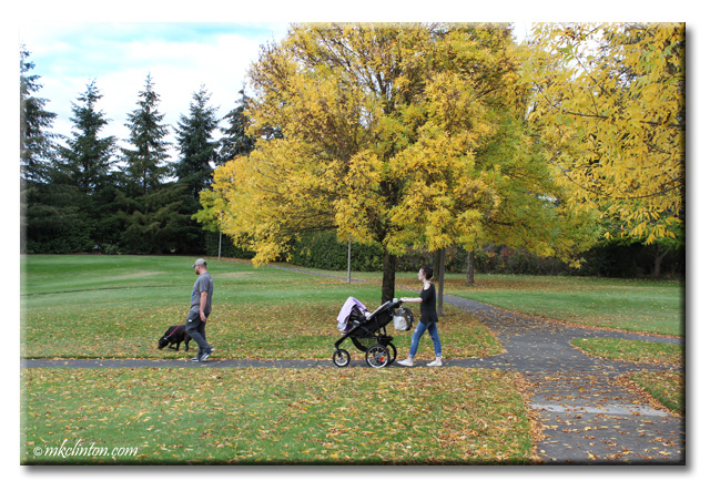 Man with dog and woman with baby stroller