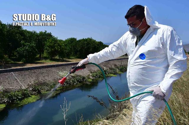 Συνεχίζονται με εντατικούς ρυθμούς οι ψεκασμοί για τον ιό του Δυτικού Νείλου στην Αργολίδα