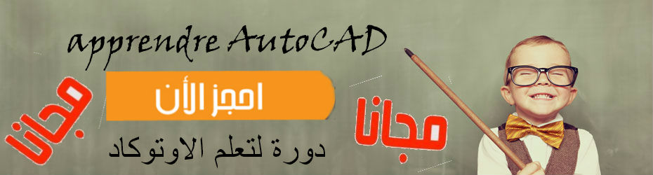 Cycle AutoCAD professionnel