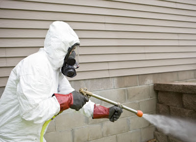 Pest Control Companies in Melbourne