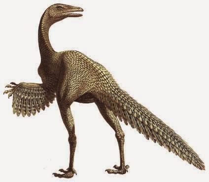 Birds To Dinosaur: Protoavis (Triassic)