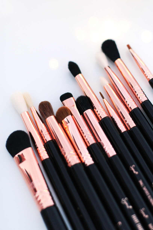 Ultimate Copper Eye Makeup Brush Set