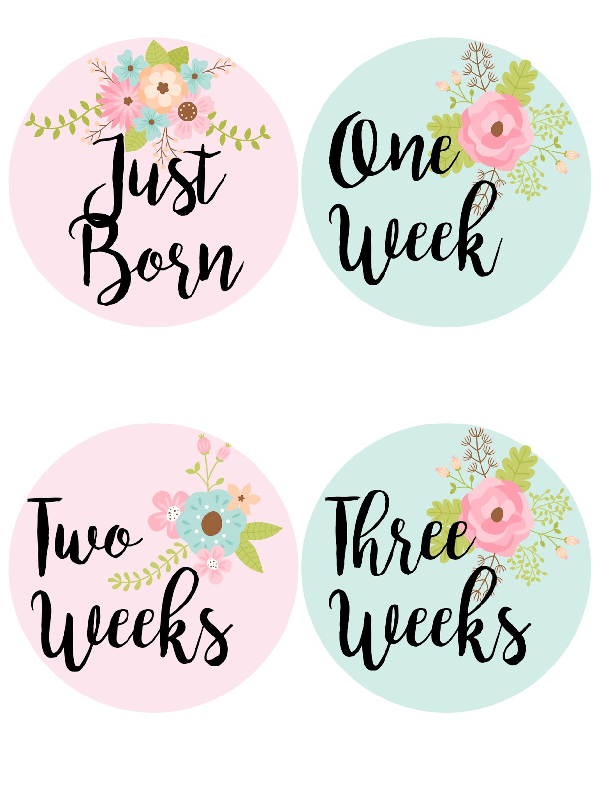 baby monthly milestone stickers by babybumpmoments set of 12
