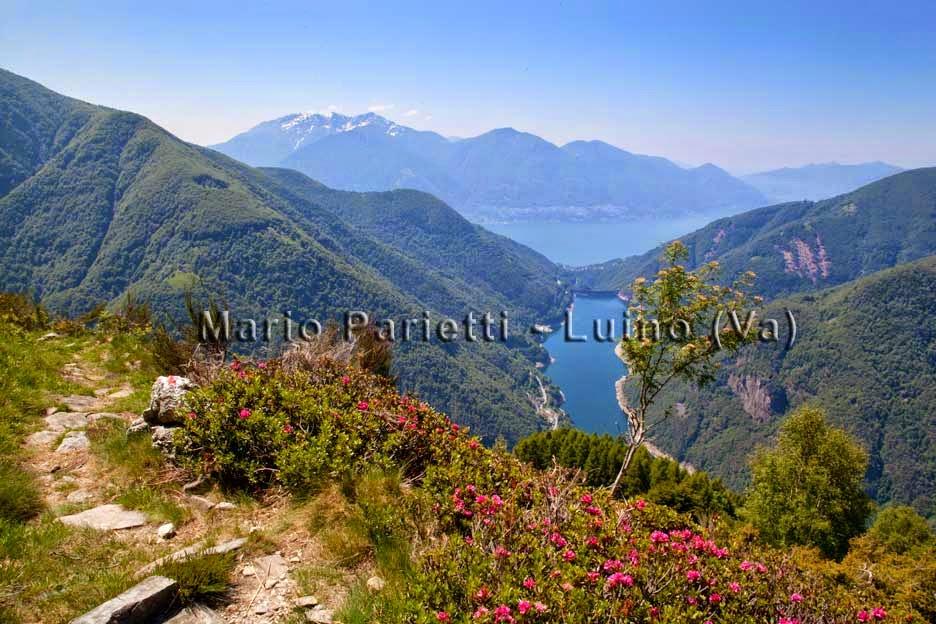 Lago Maggiore e lago di Vogorno