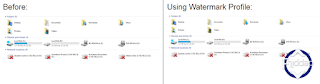 Adding Watermark in Video with Snagit Editing Software