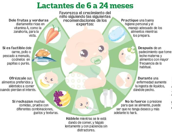 comidas que aumentan la leche materna