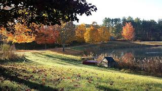 Pond at Alewive Pond Farm