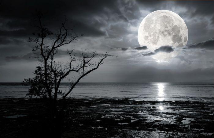Memuliakan Bulan Haram