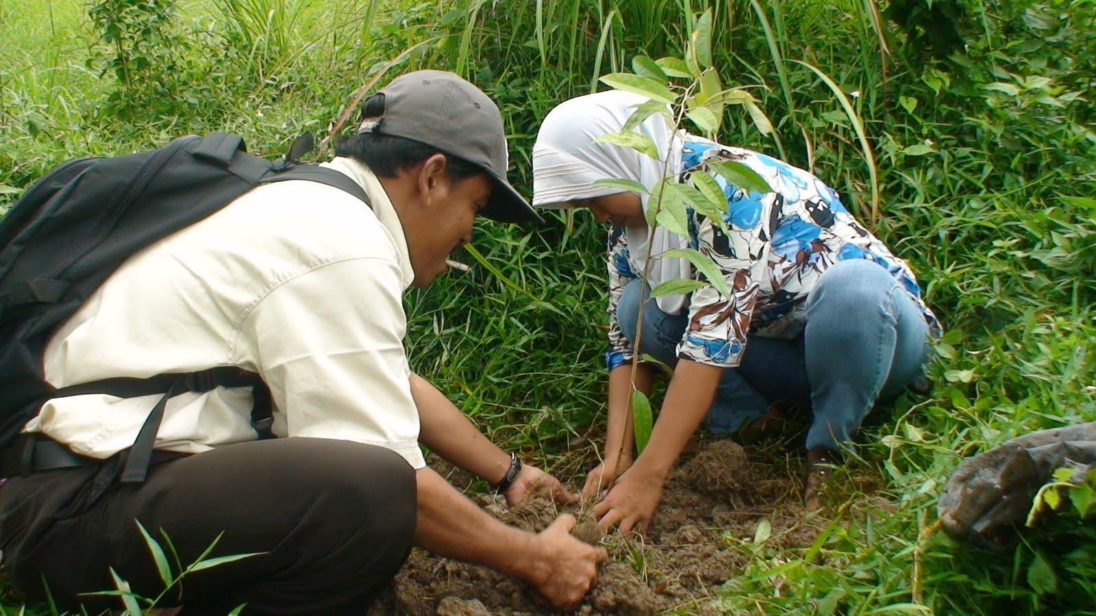 Materi Pencemaran dan Pelestarian Lingkungan: Latihan Soal