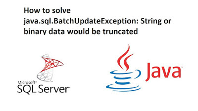 How to solve java.sql.BatchUpdateException: String or binary data would be truncated
