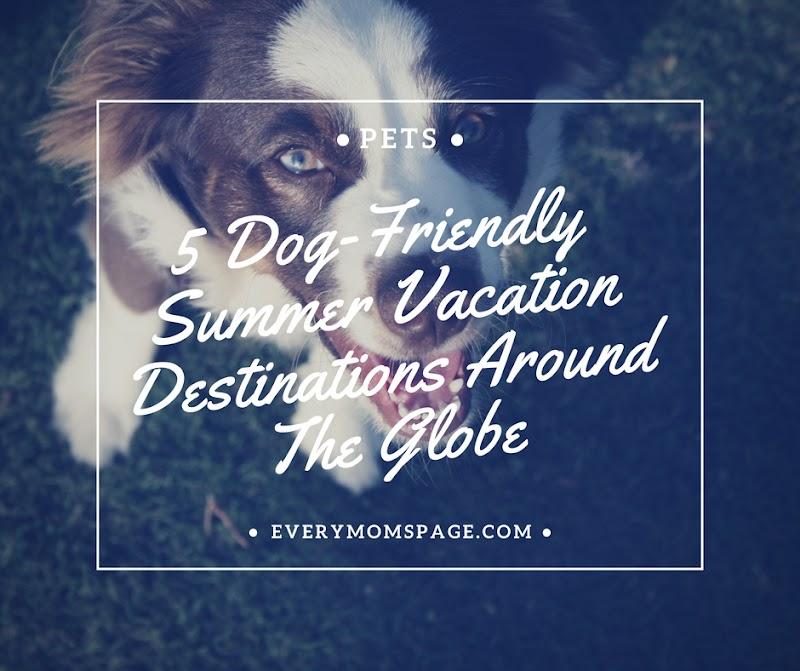5 Dog-Friendly Summer Vacation Destinations Around The Globe