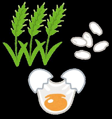 生麦生米生卵のイラスト