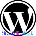 WordPress as a Website or Blogging Platform