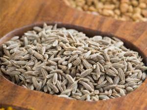 Agri commodity Tips, Chana Tips, Free Agri Tips, Free Intraday Tips, Jeera Tips,