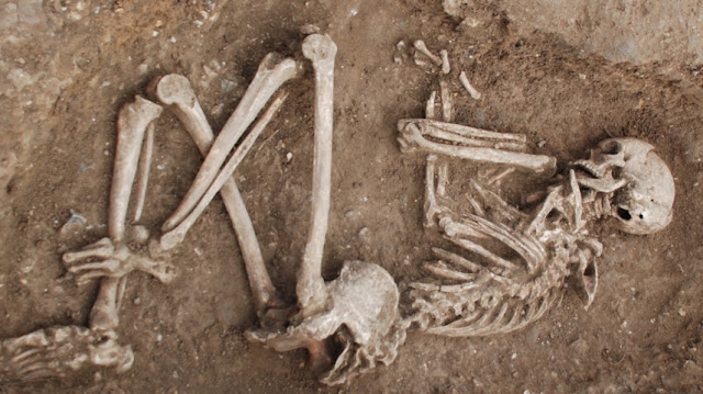 DNA from ancient skeletons reveals immigrant history of UK