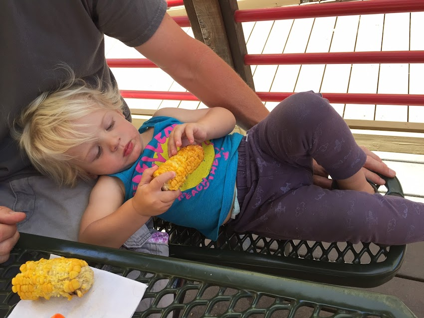 6 Favorite Things at the State Fair